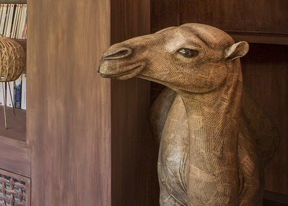 Camel-Room